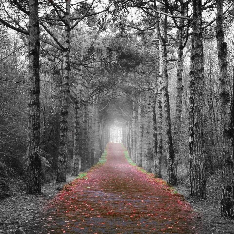 """En los pasillos solitarios hay """"muertos"""" vivientes que deambulan en la nada..."""