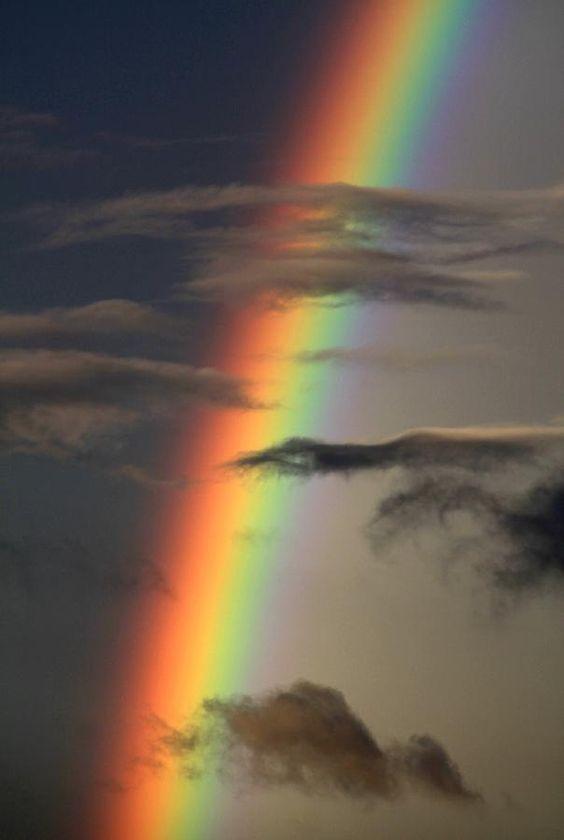 arco iris 90776058_3264202980257477_8923433223371882496_n