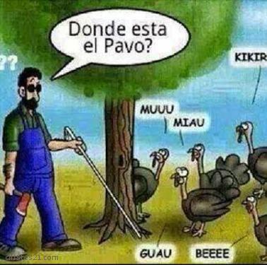 Hoy, Las Palabras Sobran...(Humor) 7