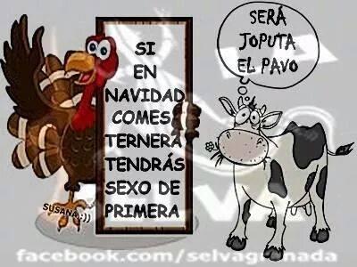 Hoy, Las Palabras Sobran...(Humor) 1