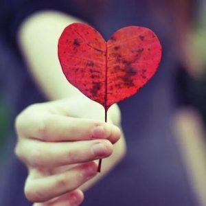 Lo Que El Corazón Quiere Sentir…