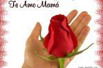 Mamá, Te quiero !
