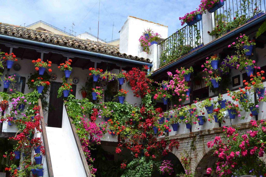 Patios De Córdoba – Patrimonio De La Humanidad