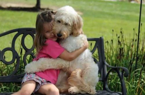 No Es Solo Un Perro - Poema De Richard a Biby 3
