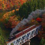 En Otro Tren…