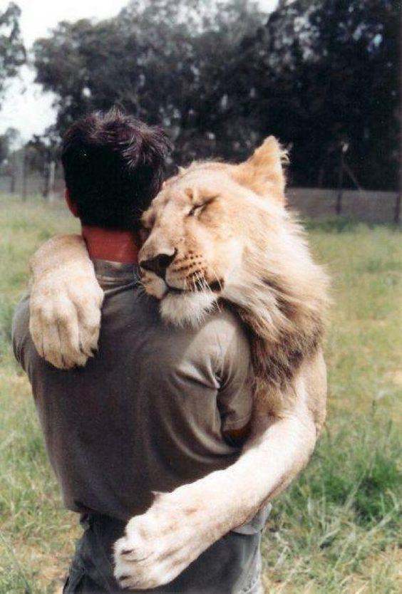Un Abrazo... 3